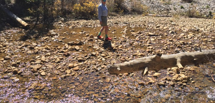 CHRIS crossing stream